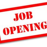 chartered accountant job opening